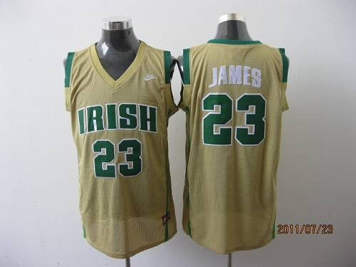 new concept ea156 c802a NCAA Notre Dame Fighting Irish 23 LeBron James Earth Yellow ...