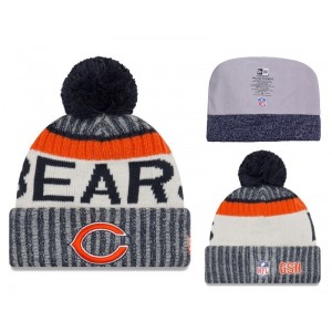 NFL Bears Fresh Logo 2017 Sideline Knit Hat