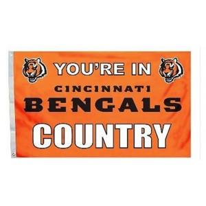 NFL Cincinnati Bengals Team Flag   2